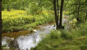 Hydrologie